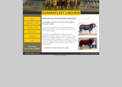 Gunnerfleet Limousin